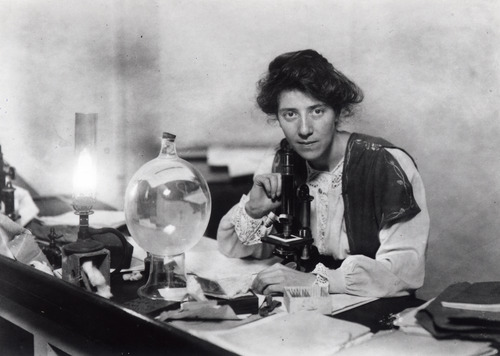 Marie Carmichael Stopes in the laboratory, around 1904. Image from Wikipedia; source Marie Stopes International; used in accordance with upload to further knowledge of Dr Stopes.
